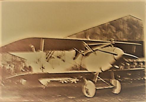 albatros-scout-1917-copy