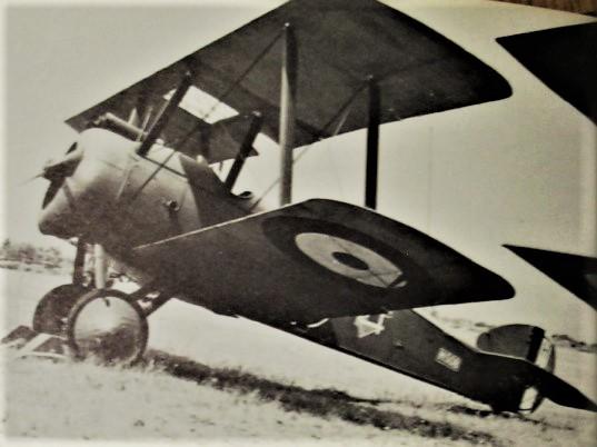 camel-1917