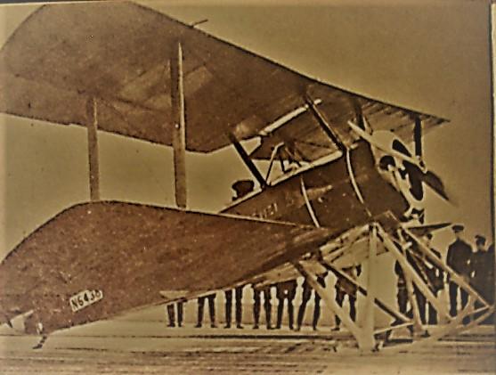 pup-1916